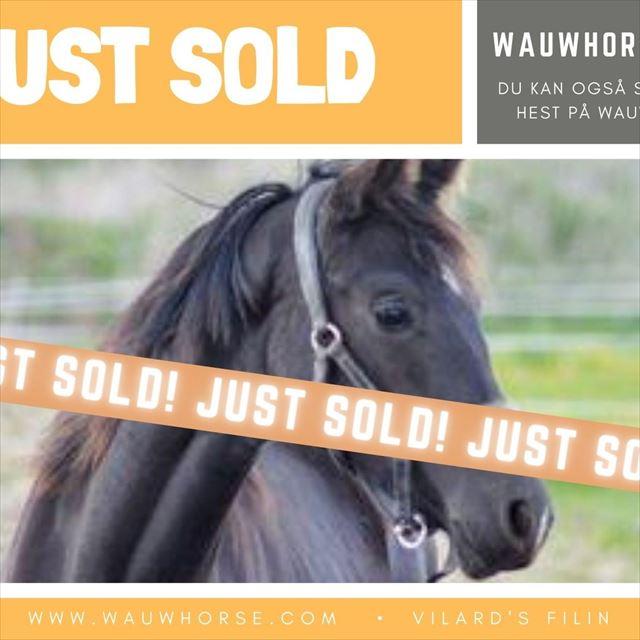 Effektive salgsdatabase på Wauwhorse